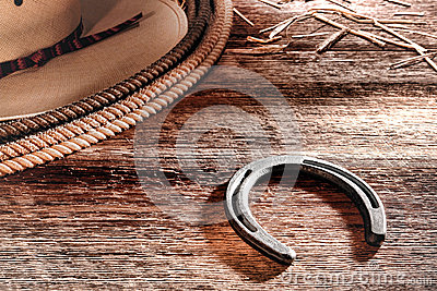 American West Rodeo Cowboy Horseshoe Hat and Lasso