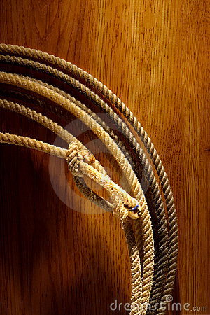 American West Rodeo Cowboy Lariat Lasso on Wood