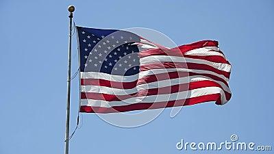 Amerikanska flaggan som vinkar i ljust solljus lager videofilmer