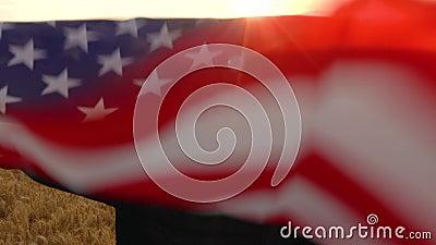 Amerykanin Afrykańskiego Pochodzenia dziewczyny nastolatka żeńska młoda kobieta trzyma amerykanina usa lampasy i gwiazdy zaznacza zbiory