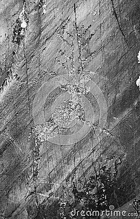 Amerykański rodzimy petroglif