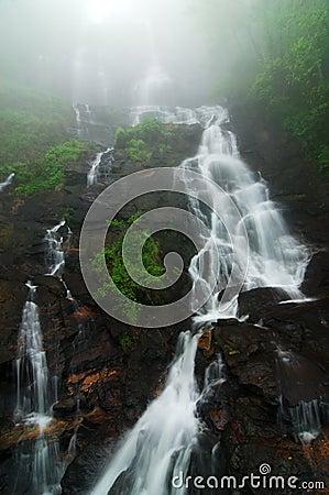 Amicalola water falls