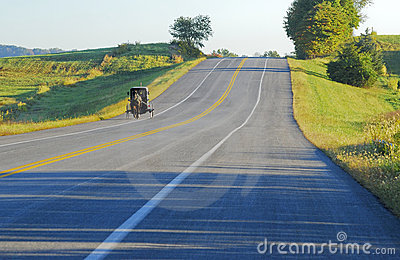 Amish Buggy morning drive