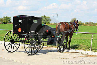 Amish Buggy at Rest