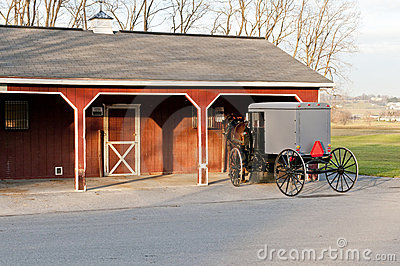 Amish buggy and shed