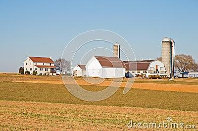 Amish farm barns and silo