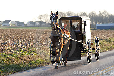 Amish horse cart