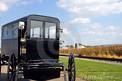 Amish horse-drawn buggy