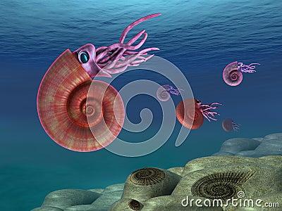 Ammonite seascape