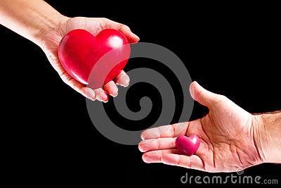 Amor dos pares nas palmas