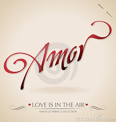 Amor hand lettering (vector)