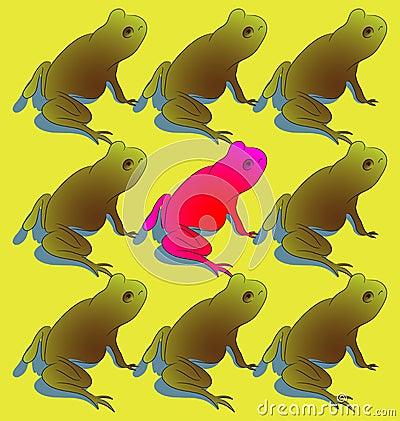 Amphibian Individuality
