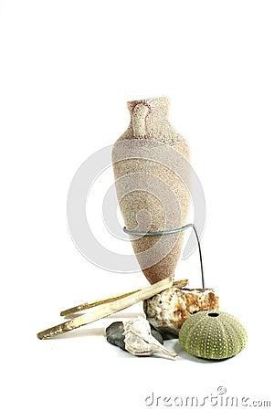 Amphora with shells