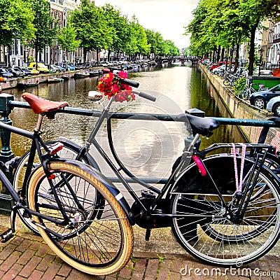 Amsterdam lifestyle