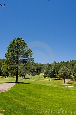 Free An Image Of A Lush Arizona Golf Course Royalty Free Stock Photo - 5508505