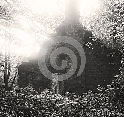 Free An Old Derelict Mill Building In The Woods Stock Photos - 114877503