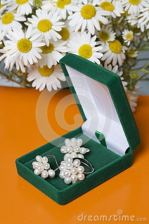 Free An Open Green Velvet Box For Jewelry. In It Lies A Set: A Ring And Earrings With Pearls. Next To The Vase Is A Bouquet Of Chamomil Stock Image - 119027001