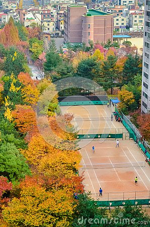 Free An Urban Tennis Court Surrounded By Trees In Autumn Colors. Top View. South Korea Stock Image - 161726781