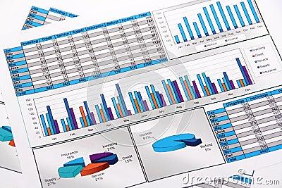 Analisys roczny mapy diagrama wykresu raport