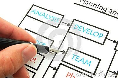 Analyse the company
