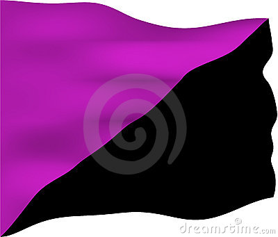 Anarchist Feminism Flag