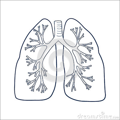 Lungs Sketch Tumblr