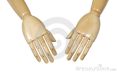 Anatomical manikin hands