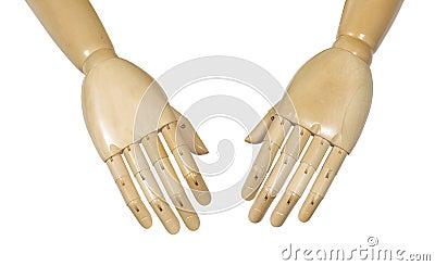 Anatomical manikin hands