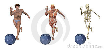 Anatomical Overlays - Bowling