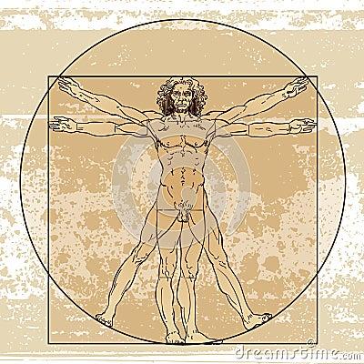 Anatomimanlig Redaktionell Foto