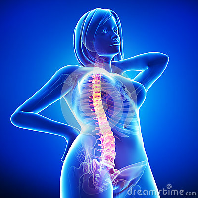 Anatomy of female back pain in blue