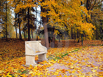 Ancient bench in autumn park