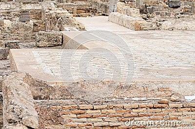 Ancient carpet