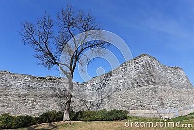 Ancient city wall ruin