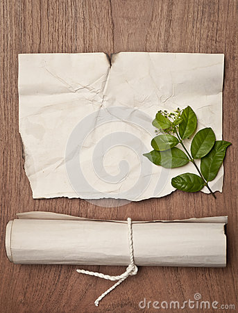 Ancient crumpled paper scroll on wood table with green leaf for background
