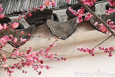 Ancient Eaves Tile and Peach Blossom
