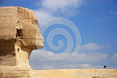 Ancient Egypt Cairo Giza Sphinx, Camel, Travel