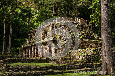 The Ancient Mayan Building in Yaxchilan