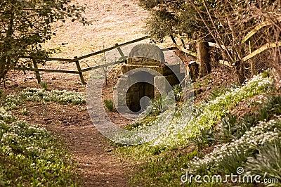 Ancient pagan Well, Newbury