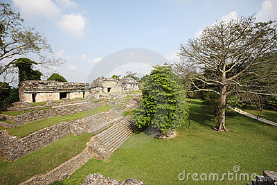 Ancient Palenque