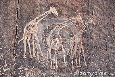 Ancient rock engraving in Sahara Desert