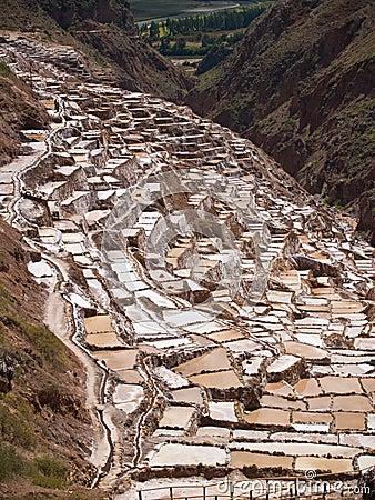 Ancient Salt basins