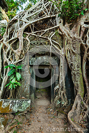 Free Ancient Stone Door And Tree Roots, Ta Prohm Temple, Angkor, Camb Stock Photography - 39489972