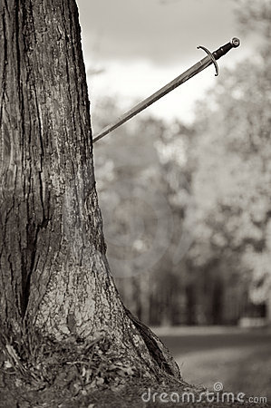 Ancient Sword will thrust in a tree