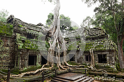 Ancient Ta Prohm Temple