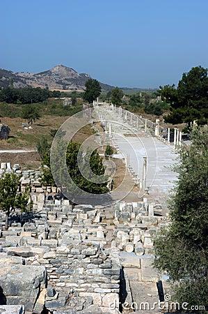 Ancient temple in Ephesus