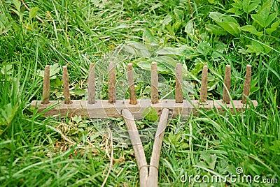 Ancinho de madeira velho na grama