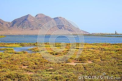 Andalusia, landscape. Salt flats Cabo de Gata