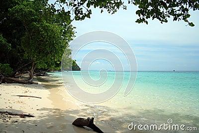 Andaman Beach XII