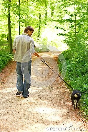 Andando o cão